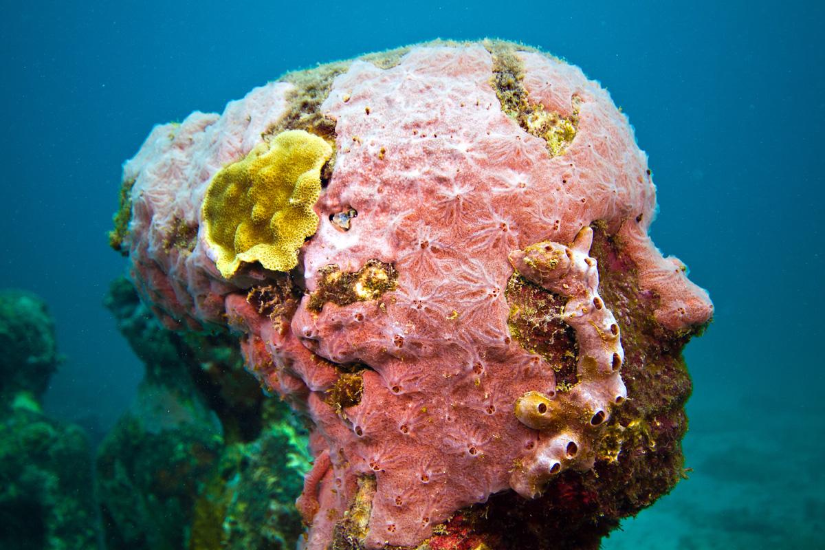 seende-unterwassermuseum-01