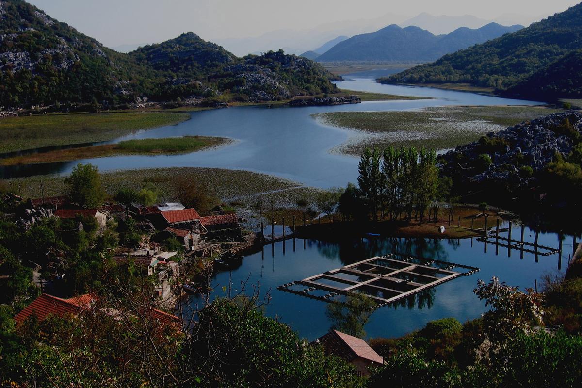 Der Skutarisee in Montenegro