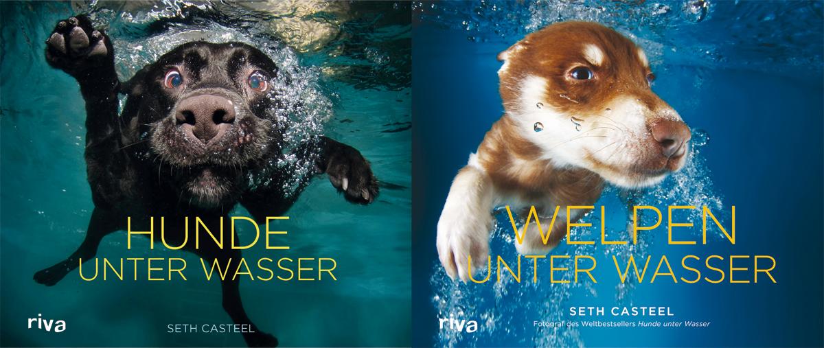 Hunde unter Wasser bei Amazon